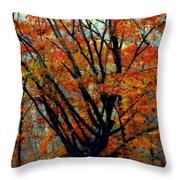 Song Of Autumn Throw Pillow by Karen Wiles
