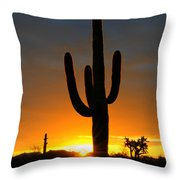 Sonoran Desert Sunrise 3 Throw Pillow by Bob Christopher
