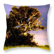 Sounds Of Topsail Throw Pillow by Karen Wiles