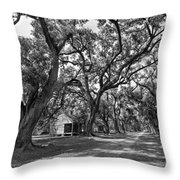 Southern Lane Monochrome Throw Pillow by Steve Harrington
