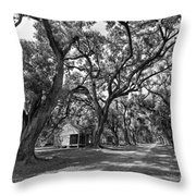 Southern Lane Monochrome Throw Pillow by Steve Harrington