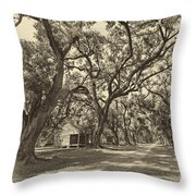 Southern Lane Sepia Throw Pillow by Steve Harrington