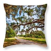 Southern Serenity Throw Pillow by Steve Harrington