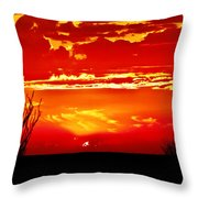 Southwest Sunset Throw Pillow by Robert Bales