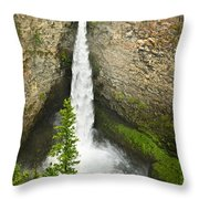 Spahats Falls Waterfall In Wells Gray Provincial Park Throw Pillow by Elena Elisseeva