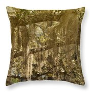 Spanish Moss On Live Oaks Throw Pillow by Christine Till