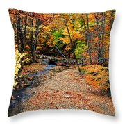 Spectrum Of Color Throw Pillow by Frozen in Time Fine Art Photography