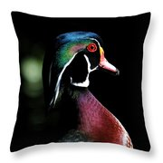 Spotlight Wood Duck Throw Pillow by Steve McKinzie