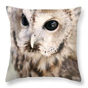 Spotted Owl Throw Pillow by Shoal Hollingsworth