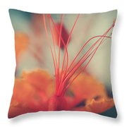 Spread The Love Throw Pillow by Laurie Search