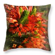 Spring Blossom 11 Throw Pillow by Xueling Zou