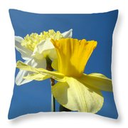 Spring Blue Sky Yellow Daffodil Flowers Art Prints Throw Pillow by Baslee Troutman