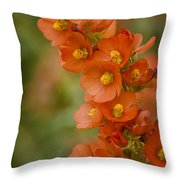 Spring Color Throw Pillow by Saija  Lehtonen