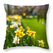 Spring In Holland. Garden Keukenhof Throw Pillow by Jenny Rainbow