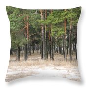 Spring In Pinery Throw Pillow by Evgeny Pisarev
