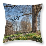 Spring Path Throw Pillow by Bill Wakeley