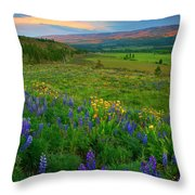 Spring Storm Passing Throw Pillow by Mike  Dawson