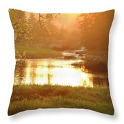 Spring Sunset Throw Pillow by Alana Ranney