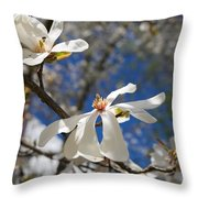 Spring Trees 1 Throw Pillow by Allan Morrison