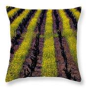 Spring Vinyards Throw Pillow by Garry Gay