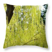 Spring Weeping Willow Throw Pillow by Will Borden