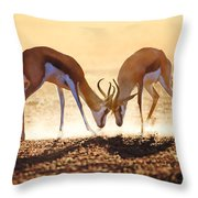 Springbok Dual In Dust Throw Pillow by Johan Swanepoel