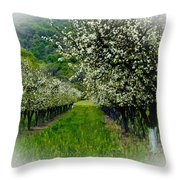 Springtime In The Orchard Throw Pillow by Bill Gallagher