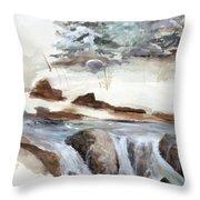 Springtime Throw Pillow by Rick Huotari