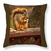 Squirrel Eating A Peanut Throw Pillow by  Onyonet  Photo Studios