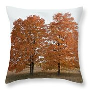 Standing Together Throw Pillow by Penny Meyers