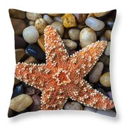 Starfish On Rocks Throw Pillow by Garry Gay