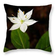 Starflower Throw Pillow by Christina Rollo
