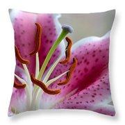 Stargazer Lily Throw Pillow by Randy Walton