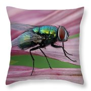 Start Your Engines Throw Pillow by Juergen Roth