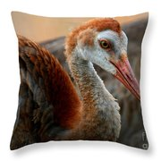 Staying Close To Mom Throw Pillow by Carol Groenen