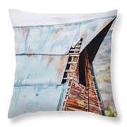 Steamboat Barn Throw Pillow by Aaron Spong