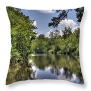 Still Waters Throw Pillow by David Troxel