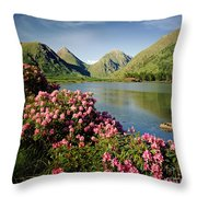 Stillness Of The Mountain Throw Pillow by Edmund Nagele