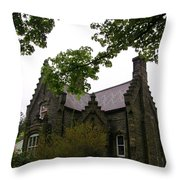 Stone Home  Throw Pillow by John Malone