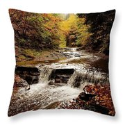 Stony Brook Gorge Throw Pillow by Justin Connor