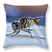 Stop By Tiger Dragon Fly Throw Pillow by Peggy  Franz