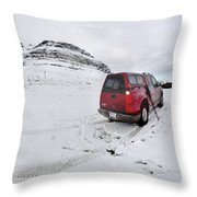 Storm Rider Throw Pillow by Evelina Kremsdorf