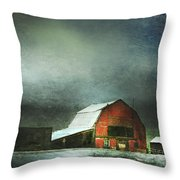 Storm Throw Pillow by Theresa Tahara
