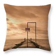 Storm Warning Throw Pillow by Evelina Kremsdorf