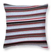 Straw Red Throw Pillow by Carol Lynch