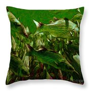 Striped Bass - Painterly V2 - Square Throw Pillow by Wingsdomain Art and Photography