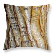 Striped Maple Throw Pillow by Steven Ralser