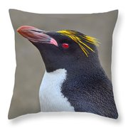 Stuck A Feather In His Hat Throw Pillow by Tony Beck