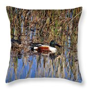 Stunning Shovelers Throw Pillow by Al Powell Photography USA