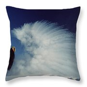 Sublimation Throw Pillow by B and C Alexander